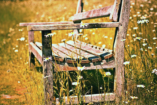 7-old-and-broken-bench
